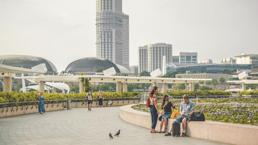 life guides for singaporean