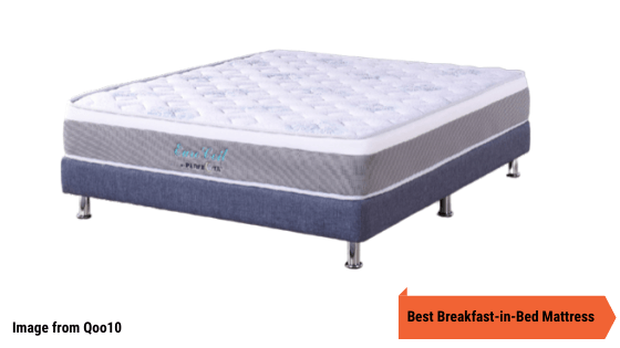 Euro Coil Spinal Care Mattress 9 Inch with Teflon fabric Water Repellent Technology review